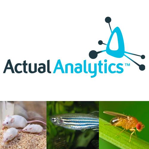 ActualTrack Recognizes and Analyzes Common Animal Behavioral Tasks