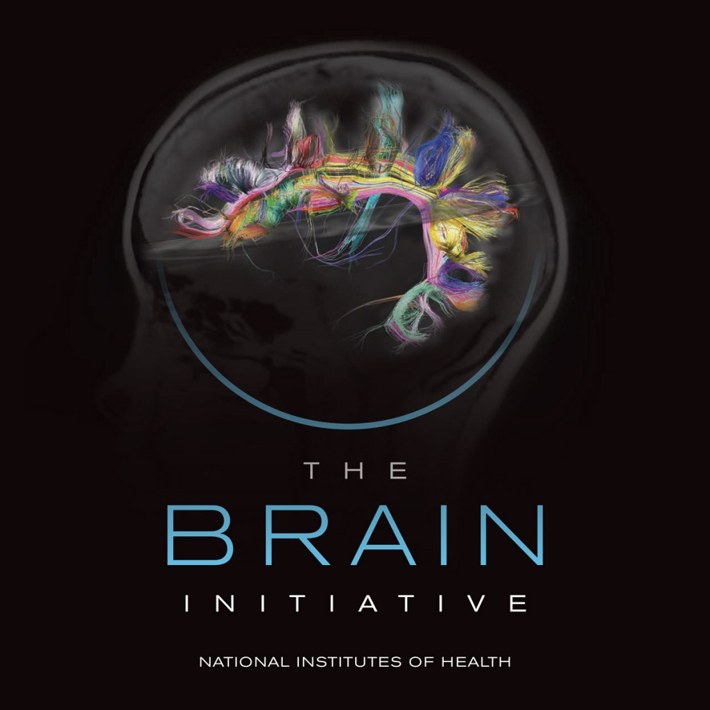 The National Institutes of Health has awarded US$46 million to 58 projects in the initial round of funding for the Brain Initiative. (Image courtesy NIH)