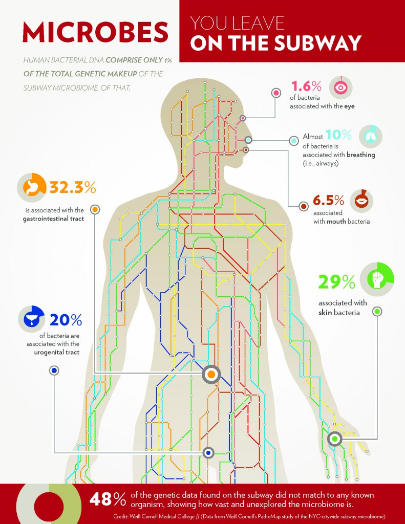 (Relative amount of DNA found in the New York subway system form bacteria associated with the human body. Courtesy: Weill Cornell Newsroom)